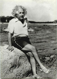 Will there be an Einstein for the workings of the brain in our century?